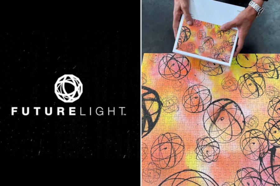 Droit de la Propriété Intellectuelle | Futura c/ The North Face : Quand le droit d'auteur s'oppose au droit des marques